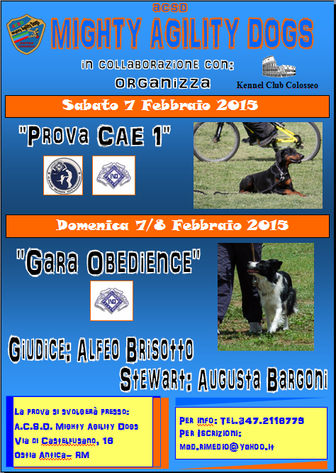 gara-obedience-febraio-2015-png